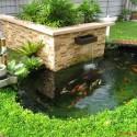 Những lưu ý với bể nước trong sân vườn